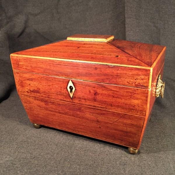 English Regency Rosewood Tea Caddy