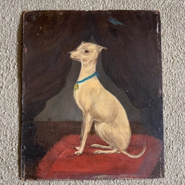 A White Whippet, Oil on Artist Board